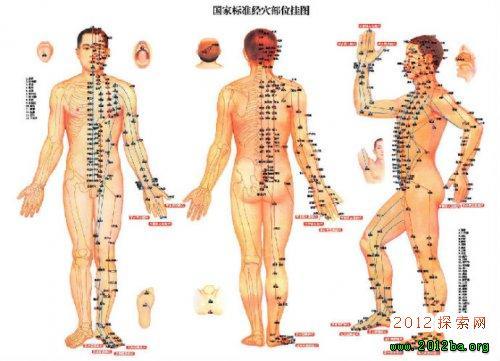 人体经络图解大全图片大全 人体穴位图解大全
